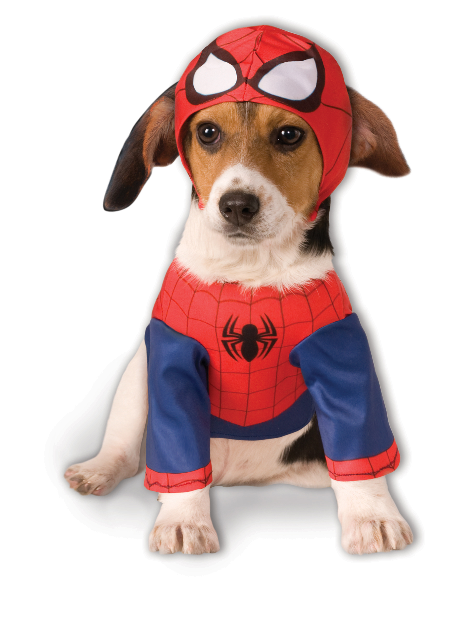 Spider-Man Costume For Pets  sc 1 st  KOZ1 & Halloween Costumes for Adults u0026 Kids