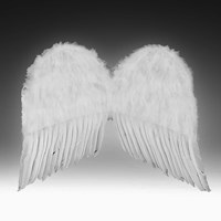 Child Feather Wings White