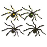Spider, 50'' Hairy, Posea