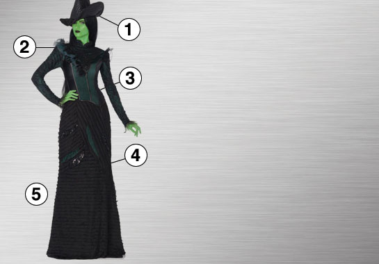 Elphaba Defy Gravity Dress Ultimate Costume