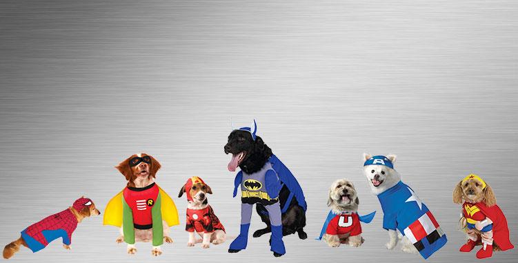 Pet Superhero Group