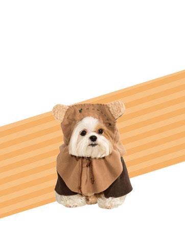 Star Wars Ewok Bio