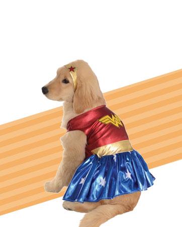 Wonder Woman Dog bio