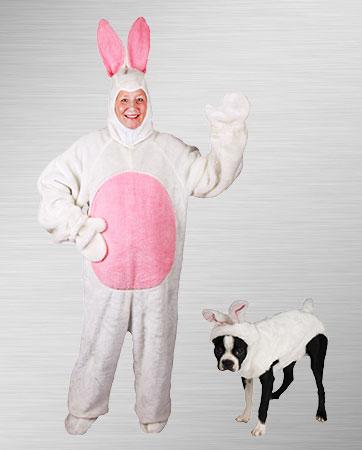 Adult Bunny & Pet Bunny
