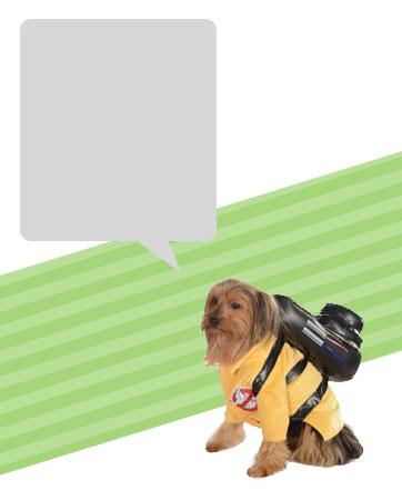 Ghostbuster Dog Bio