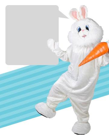 Bunny Mascot Bio