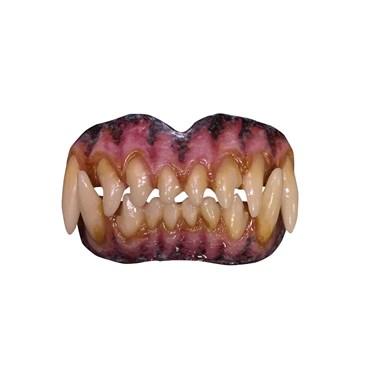 Adult Wolf Teeth