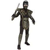 Ancient Dynasty Ninja Child Costume