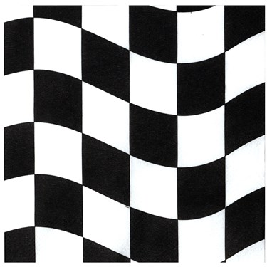 Black and White Check Lunch Napkins (18 count)