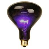 Black Spotlight Bulb (75 Watt)