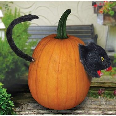 Cat Pumpkin Push-Ins