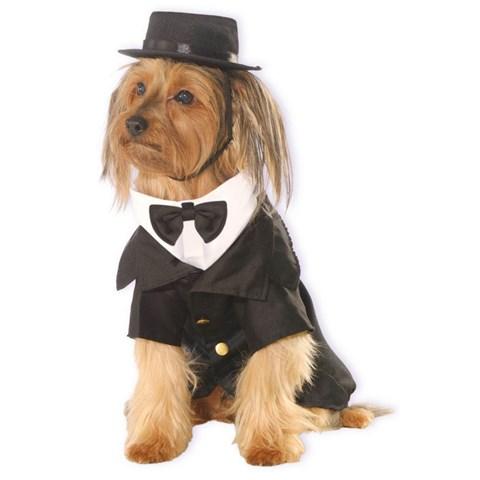 Dapper Dog Costume