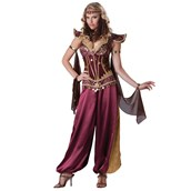 Desert Jewel Adult Costume