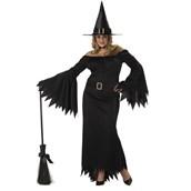 Elegant Witch Adult Plus Costume