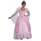 Fairy Tale Princess Adult Costume