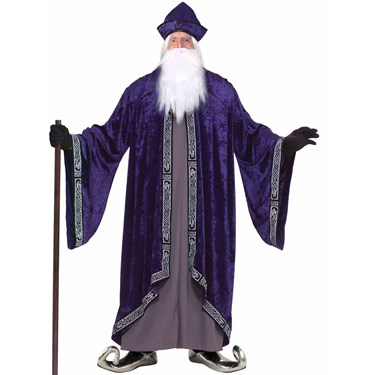 Grand Wizard Adult Plus Costume