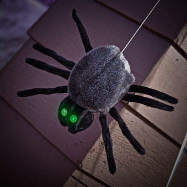 Hanging Dropping Black Spider