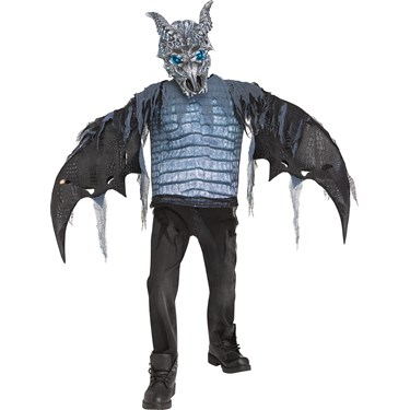 Ice Dragon Boys Light Up Costume