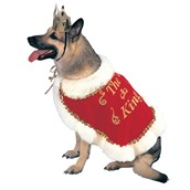 King Pet Costume