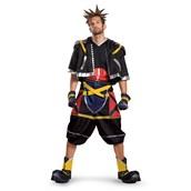 Kingdom Hearts Sora Deluxe Teen Costume