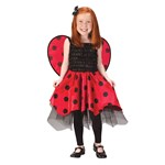 Lady Bug with Wings Toddler / Child Costume