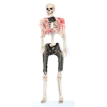 Lifesize Pose N Stay Zombie Skeleton