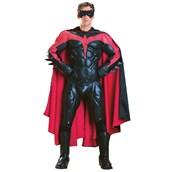 Mens Collectors Robin Costume