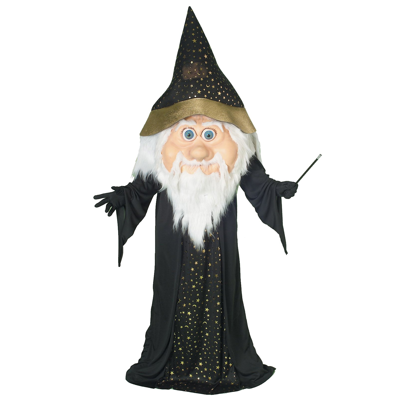 Parade Wizard Adult Costume | BuyCostumes.com