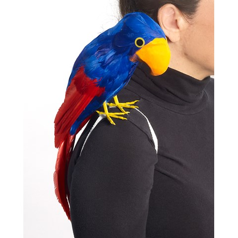 Parrot, Pirate