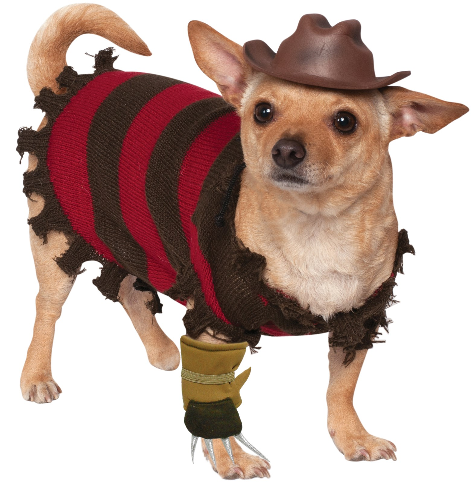 pet freddy kreuger costume - Freddy Krueger Halloween Decorations