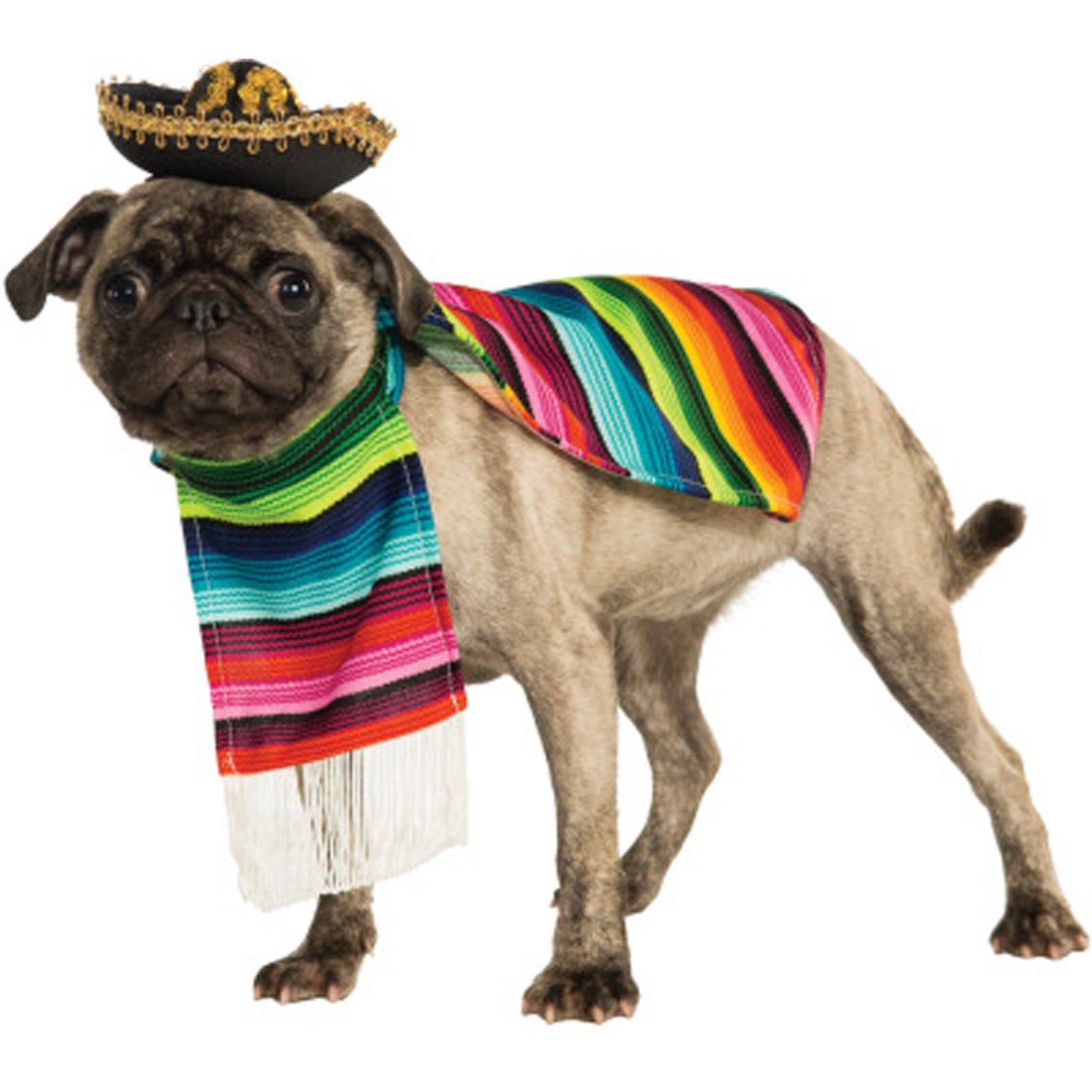 poncho-and-sombrero-mexican-dog-costume-