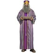 Purple Wiseman Costume For Men