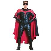 Robin Collectors Adult Costume