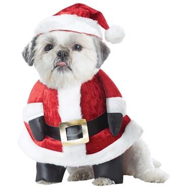 Santa Paws Pet Costume