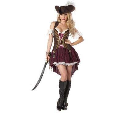 Swashbuckler Adult Plus Costume