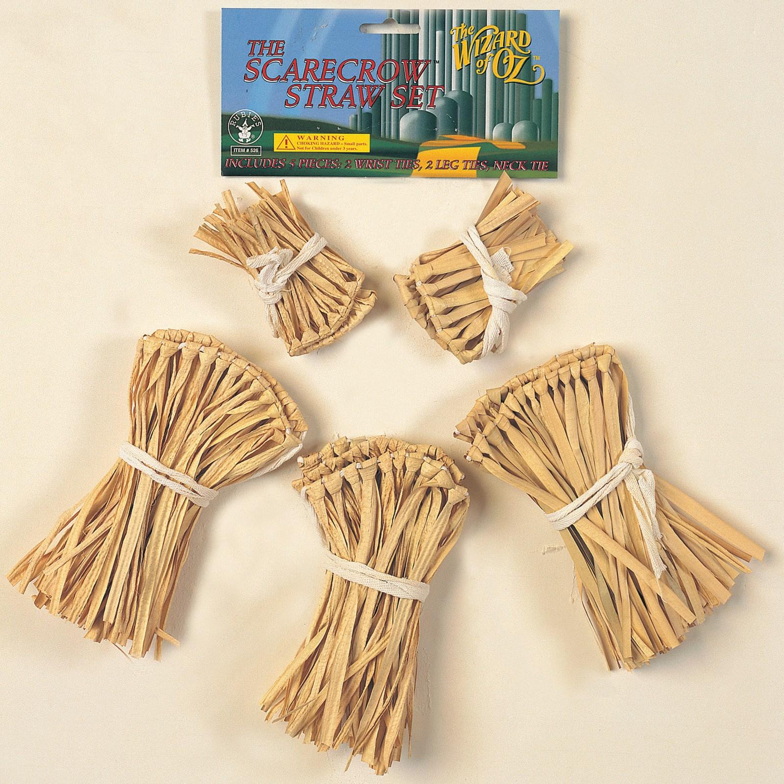 The Wizard of Oz - Scarecrow Straw Accessory Kit | BuyCostumes.com