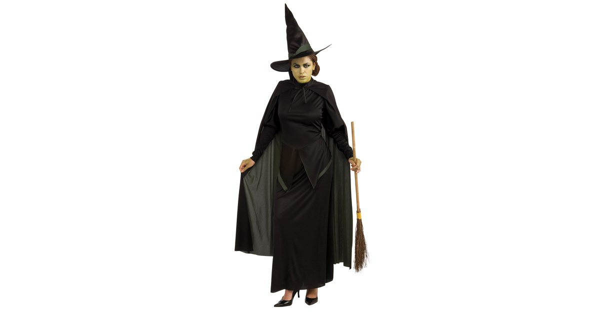 The Wizard of Oz Wicked Witch Adult Costume | BuyCostumes.com