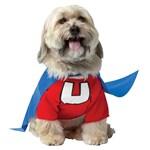 Underdog Pet Costume