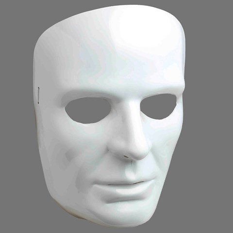 White Face Adult Mask