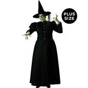 Witch Elite Collection Adult Plus Costume