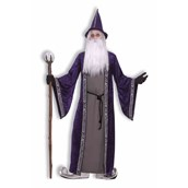 Wizard Adult Costume