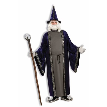 Wizard Adult Plus Costume