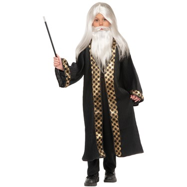 Wizard Child Wig and Beard