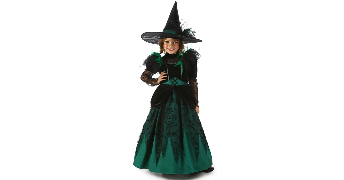 Wizard of Oz Deluxe Wicked Witch of the West Costume   BuyCostumes.com