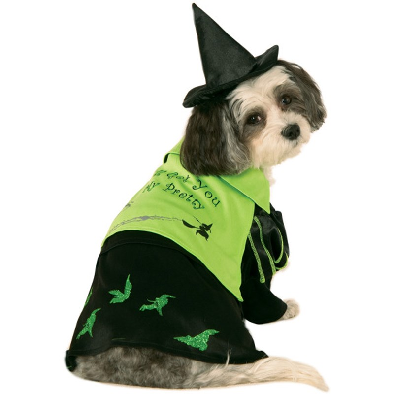 Wizard Of Oz - Wicked Witch Of The West Witch Dog Costume